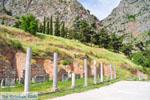 Delphi (Delfi) | Griekenland | De Griekse Gids foto 37 - Foto van De Griekse Gids