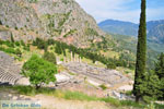 GriechenlandWeb Delphi (Delfi) | Griechenland | GriechenlandWeb.de foto 67 - Foto GriechenlandWeb.de