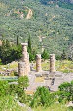 Delphi (Delfi) | Griekenland | De Griekse Gids foto 71 - Foto van De Griekse Gids