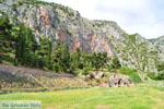 Delphi (Delfi) | Griekenland | De Griekse Gids foto 73 - Foto van De Griekse Gids