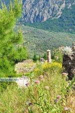 Delphi (Delfi) | Griekenland | De Griekse Gids foto 84 - Foto van De Griekse Gids