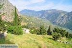 Delphi (Delfi) | Griekenland | De Griekse Gids foto 91 - Foto van De Griekse Gids