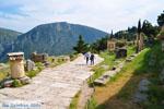 GriechenlandWeb.de Delphi (Delfi) | Griechenland | GriechenlandWeb.de foto 107 - Foto GriechenlandWeb.de