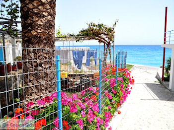 De was in Agia Roumeli | Chania Kreta | Griekenland - Foto van https://www.grieksegids.nl/fotos/eiland-kreta/fotos-mid/agia-roumeli-kreta/agia-roumeli-kreta-016.jpg