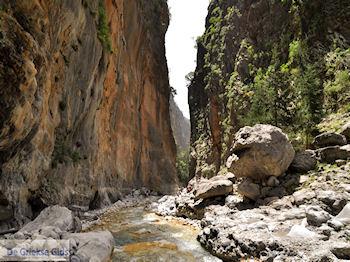Samaria Kloof | Kreta | Griechenland foto 40 - Foto GriechenlandWeb.de