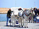 Paard en koets  | Chania stad | Kreta - Foto van De Griekse Gids