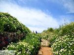 Wandeling tot op de Schiavo vesting  | Chania stad | Kreta - Foto van De Griekse Gids