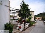 Traditioneel dorp Deliana | Chania Kreta | Foto 5 - Foto van De Griekse Gids