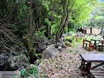 Traditioneel dorp Deliana | Chania Kreta | Foto 9 - Foto van De Griekse Gids