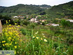 Traditioneel dorp Deliana | Chania Kreta | Foto 14 - Foto van De Griekse Gids