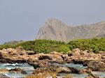 GriechenlandWeb.de Falassarna (Falasarna) Chania Kreta | Griechenland | Foto 9 - Foto GriechenlandWeb.de