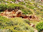 Oud Falassarna (Falasarna) Chania Kreta | Griekenland | Foto 31 - Foto van De Griekse Gids