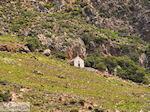 Falassarna (Falasarna) Chania Kreta | Griekenland | Foto 35 - Foto van De Griekse Gids