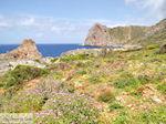 Falassarna (Falasarna) Chania Kreta | Griekenland | Foto 36 - Foto van De Griekse Gids