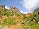 Oud Falassarna (Falasarna) Chania Kreta | Griekenland | Foto 39 - Foto van De Griekse Gids