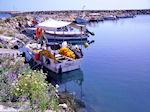 GriechenlandWeb.de Vissershaventje Kolymbari (Kolimbari) foto 3 | Chania Kreta | Griechenland - Foto GriechenlandWeb.de