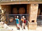 Knossos Kreta | Griekenland | De Griekse Gids foto 19 - Foto van De Griekse Gids