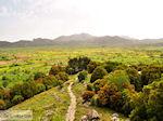 Lassithi vlakte Kreta | Griekenland | De Griekse Gids foto 11 - Foto van De Griekse Gids