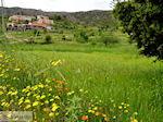 Lassithi vlakte Kreta | Griekenland | De Griekse Gids foto 32 - Foto van De Griekse Gids