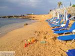 Malia Kreta | Griekenland | De Griekse Gids foto 39 - Foto van De Griekse Gids
