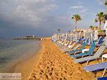 Malia Kreta | Griekenland | De Griekse Gids foto 41 - Foto van De Griekse Gids