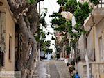 Mirtos Kreta | Griekenland | De Griekse Gids foto 4 - Foto van De Griekse Gids