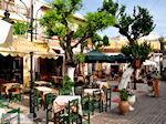 GriechenlandWeb.de Mochos Kreta | Griechenland | GriechenlandWeb.de foto 3 - Foto GriechenlandWeb.de