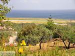 Maleme | Chania Kreta | Foto 15 - Foto van De Griekse Gids