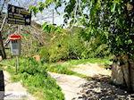 Wandelpad van Stalos naar Agia Marina en Kato Stalos  | Chania | Kreta - Foto van De Griekse Gids