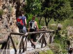Samaria Kloof | Kreta | Griekenland foto 9 - Foto van De Griekse Gids