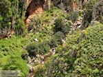 Traditioneel dorp Topolia | Chania Kreta | Foto 26 - Foto van De Griekse Gids