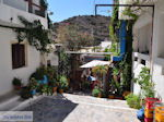 Agia Galini Kreta - Foto 69 - Foto GriechenlandWeb.de