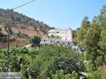 Agia Galini Kreta - Foto 93 - Foto van De Griekse Gids