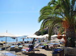 Agia Galini Kreta - Foto 134 - Foto van De Griekse Gids