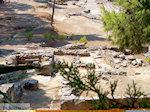 Agia Trias bij Festos | Kreta | Foto 4 - Foto van De Griekse Gids