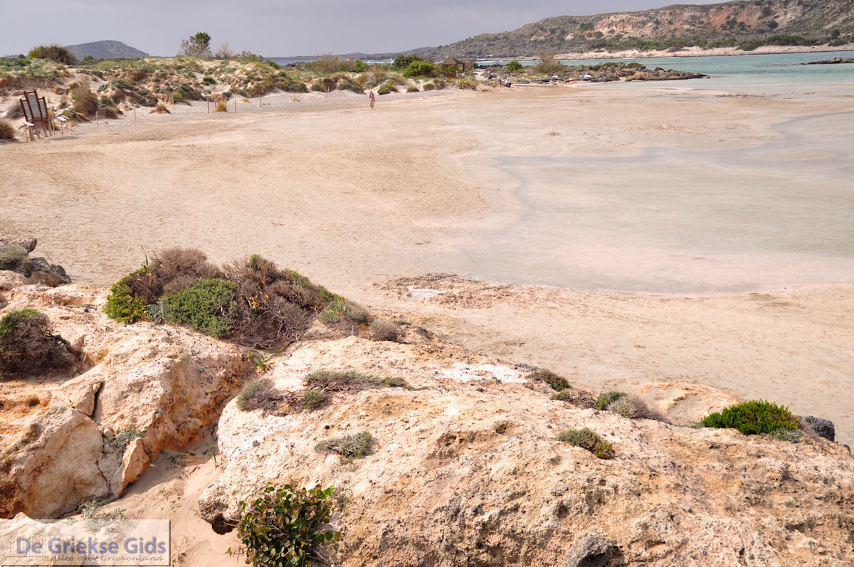 foto Zandstrand Elafonisi (Elafonissi)   Chania Kreta   Foto 46