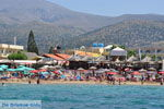 Malia Kreta | Griekenland | De Griekse Gids - foto 003 - Foto van De Griekse Gids