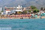 Malia Kreta | Griekenland | De Griekse Gids - foto 004 - Foto van De Griekse Gids