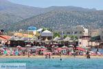 Malia Kreta | Griekenland | De Griekse Gids - foto 006 - Foto van De Griekse Gids