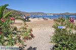 Elounda Kreta | Griekenland | De Griekse Gids - foto 042 - Foto van De Griekse Gids