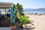 Agios Nikolaos | Kreta | De Griekse Gids - foto 0038 - Foto van De Griekse Gids