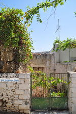 GriechenlandWeb.de Milatos Kreta | Griechenland | GriechenlandWeb.de - foto 010 - Foto GriechenlandWeb.de