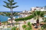 Sissi Kreta | Griekenland | De Griekse Gids - foto 006 - Foto van De Griekse Gids