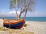 Maleme strand | Chania Kreta | Griekenland | Foto 1 - Foto van De Griekse Gids