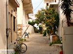 Paleochora Kreta | Griekenland | De Griekse Gids foto 17 - Foto van De Griekse Gids