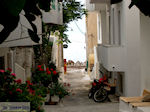 Paleochora Kreta | Griekenland | De Griekse Gids foto 18 - Foto van De Griekse Gids