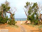 Paleochora Kreta | Griekenland | De Griekse Gids foto 23 - Foto van De Griekse Gids