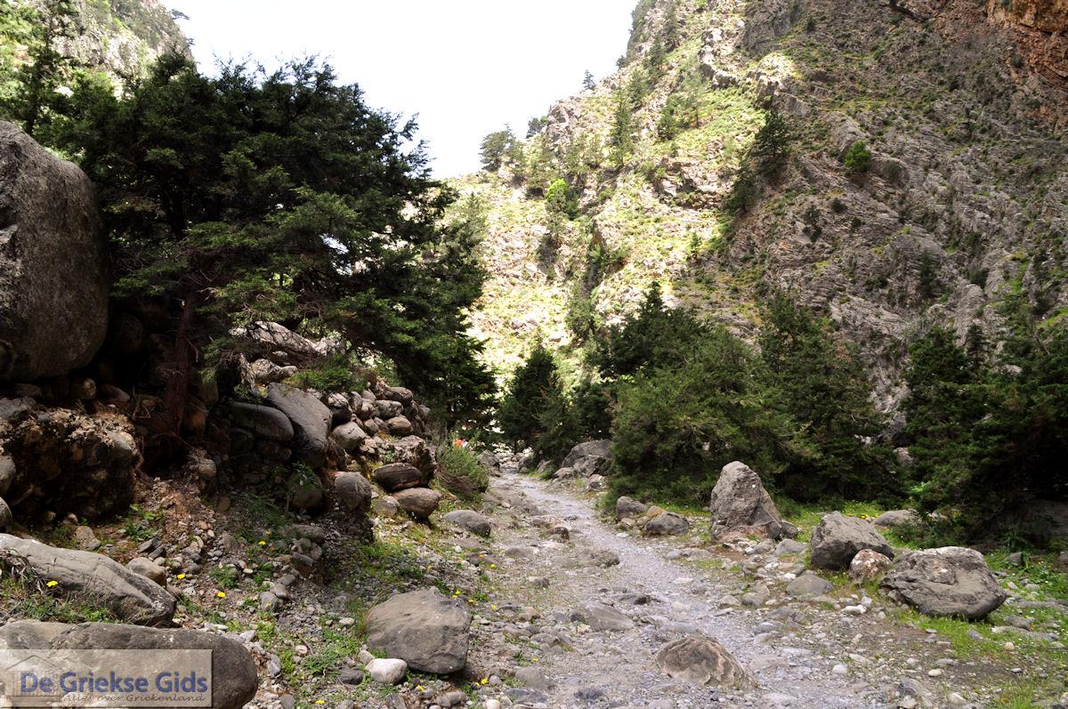 foto Samariakloof (Chania Kreta)