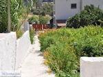 GriechenlandWeb.de Vori Heraklion Kreta - Foto 10 - Foto GriechenlandWeb.de