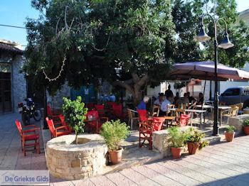 Vori Heraklion Kreta - Foto 26 - Foto van https://www.grieksegids.nl/fotos/eiland-kreta/fotos/vori-kreta/350pixels/vori-zuid-kreta-026.jpg